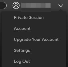 private_session_spotify_1